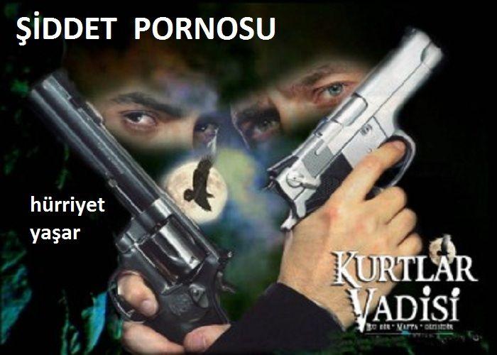 KURTLAR VADİSİ VE ŞİDDET PORNOSU
