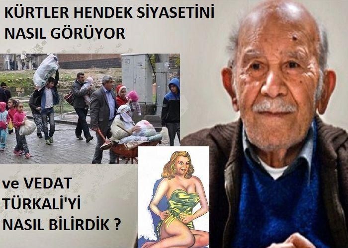 VEDAT TÜRKALİ'Yİ NASIL BİLİRDİK VE PKK'nın ÖZYÖNETİM-HENDEK SİYASETİNİ BÖLGEDEKİ KÜRTLER NASIL GÖRÜYOR