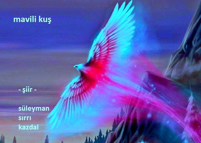 Mavili Kuş