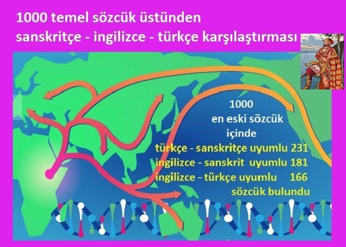 1000 temel sözcük üstünden Türkçe-Sanskritçe-İngilizce uyumunun karşılaştırması
